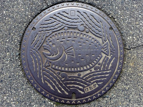 Ketaka Tottori, manhole cover 3 (鳥取県気高町のマンホール3)
