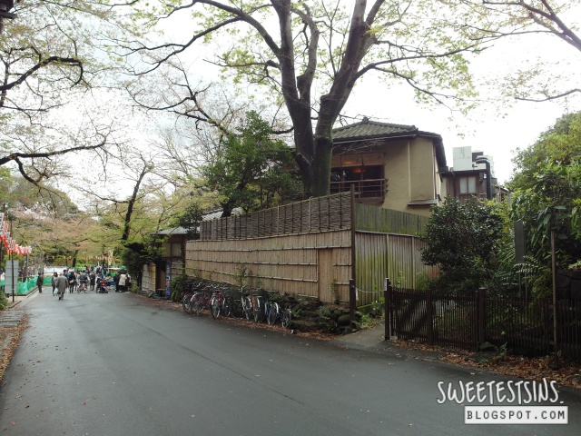 japan tokyo trip ueno park 12