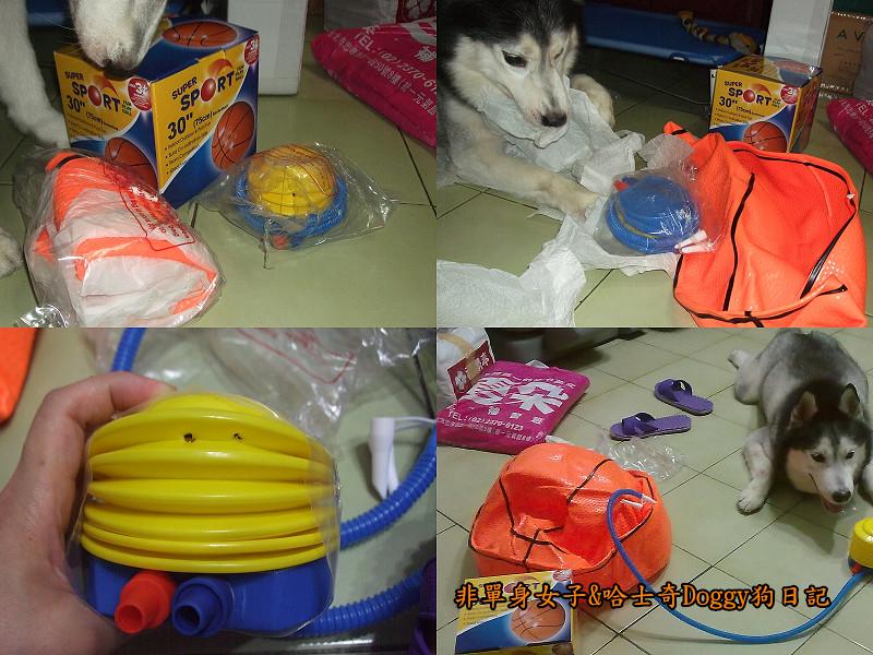2012哈士奇doggy寵物玩具09大球