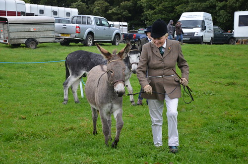 Bowes Agricultural Show Sept 15 (34)