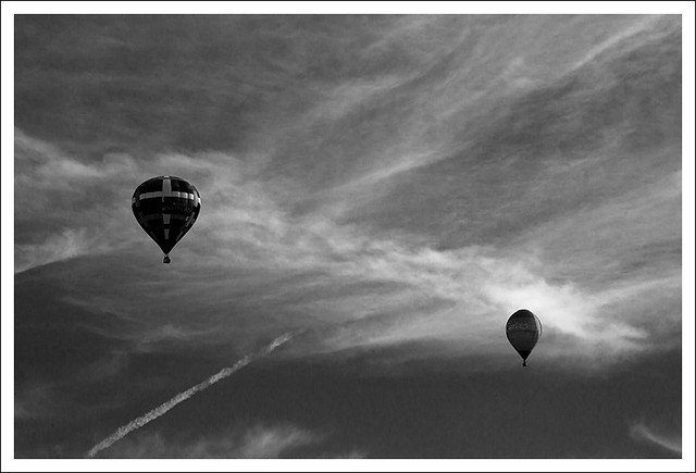 Great Forest Park Balloon Race 2015-09-19 3