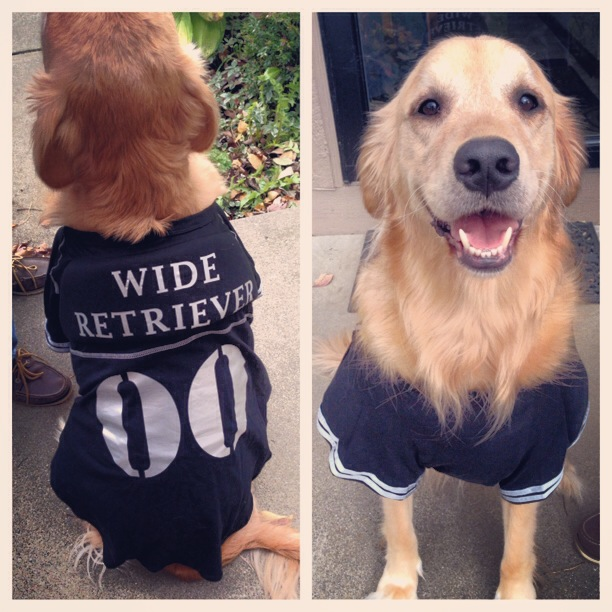 Current Publishing 2015 Halloween Pet Costume Contest