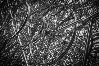 Forever Bicycles