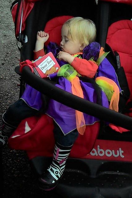 worn out little witch whipsnade