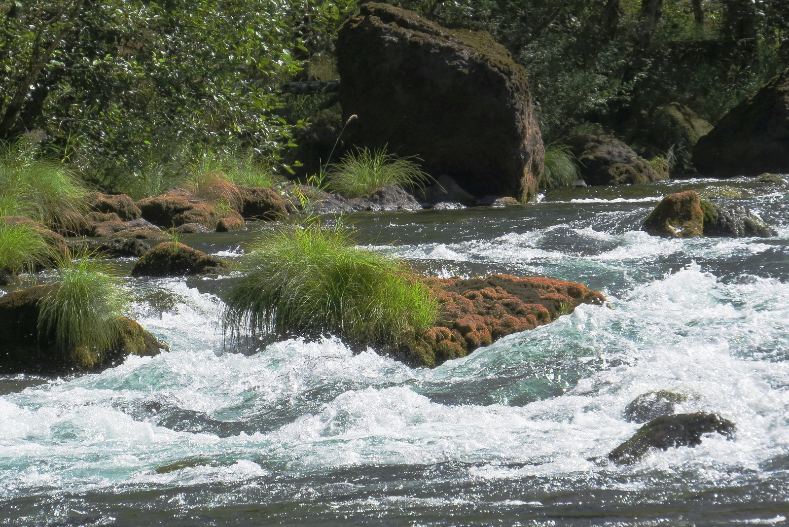 Clackamas River, Mount Hood, Oregon
