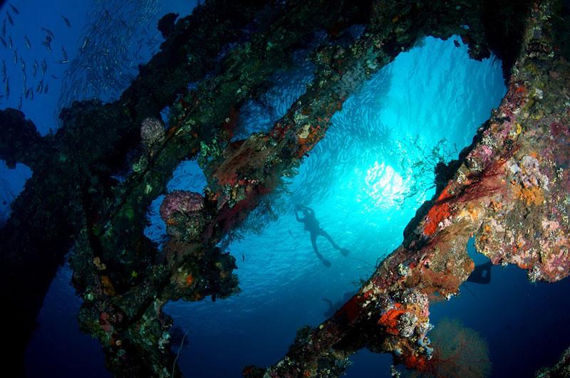 liberty-shipwreck-2011.underwaterfestival-by-matt-timbrell