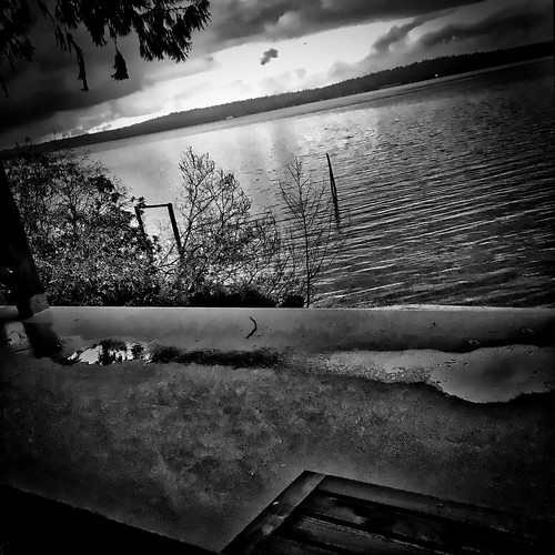 bw pugetsound vashonisland iphone project365 tonality 362365 iphoneography