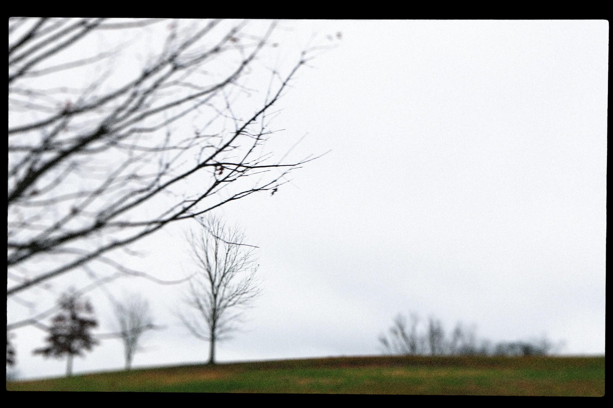 Freedom Park, Moreland Ave. December 2015