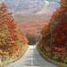 安比の紅葉 - Appi plateau.