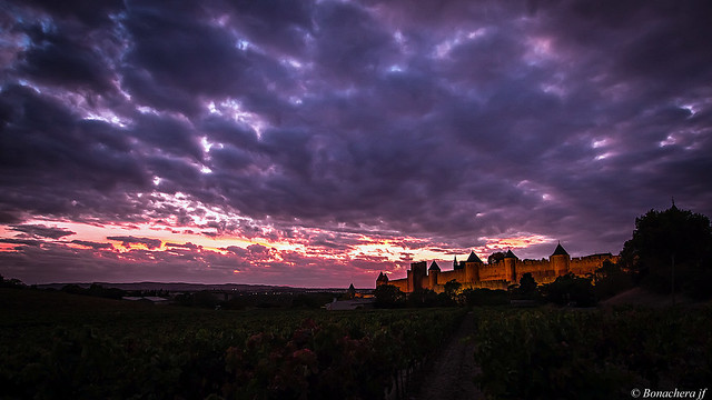 Carcassonne-047