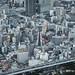 Harukas 阿倍野|大阪 Osaka by 里卡豆