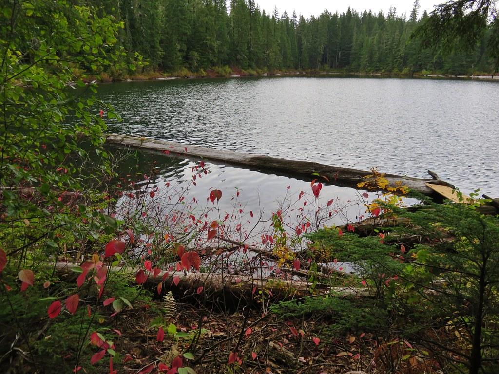 Southern Gordon Lake