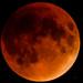 Lunar Eclipse : September 27, 2015 by jpeltzer
