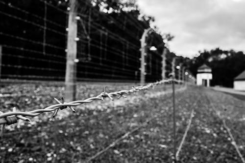 Stacheldraht Buchenwald, Nazi Concentration Camp WWII