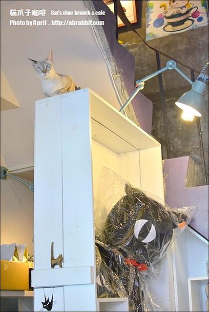 22522536775 afa4a42da6 z - [台中]貓爪子咖啡--早午餐豐盛,店內有四隻貓兒超可愛!@北區 大德街 中國醫