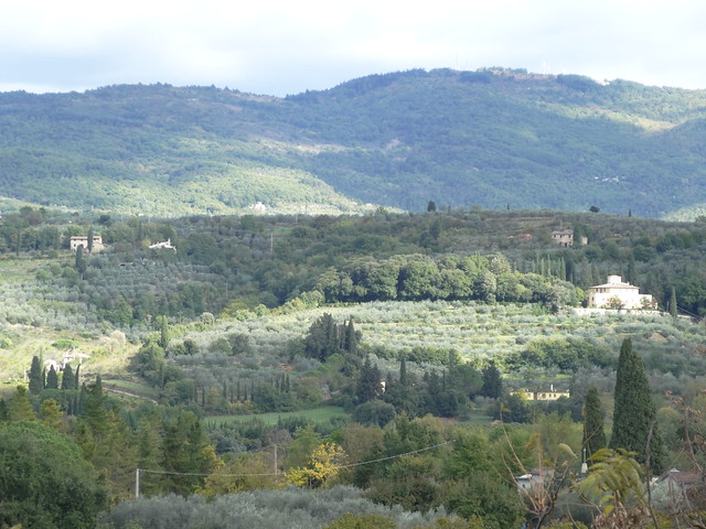 View from top of Arezzo