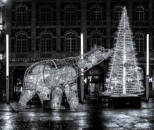 Leuven Kerstmis - Martelarenplein -  B&W