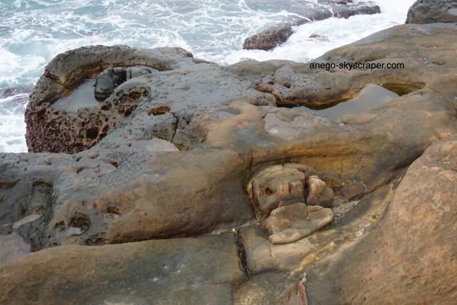 野柳 亀が海から上がってくる