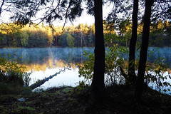 Autumn Morning Reflections (20)
