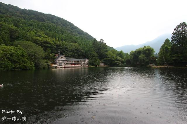 九州金鱗湖54