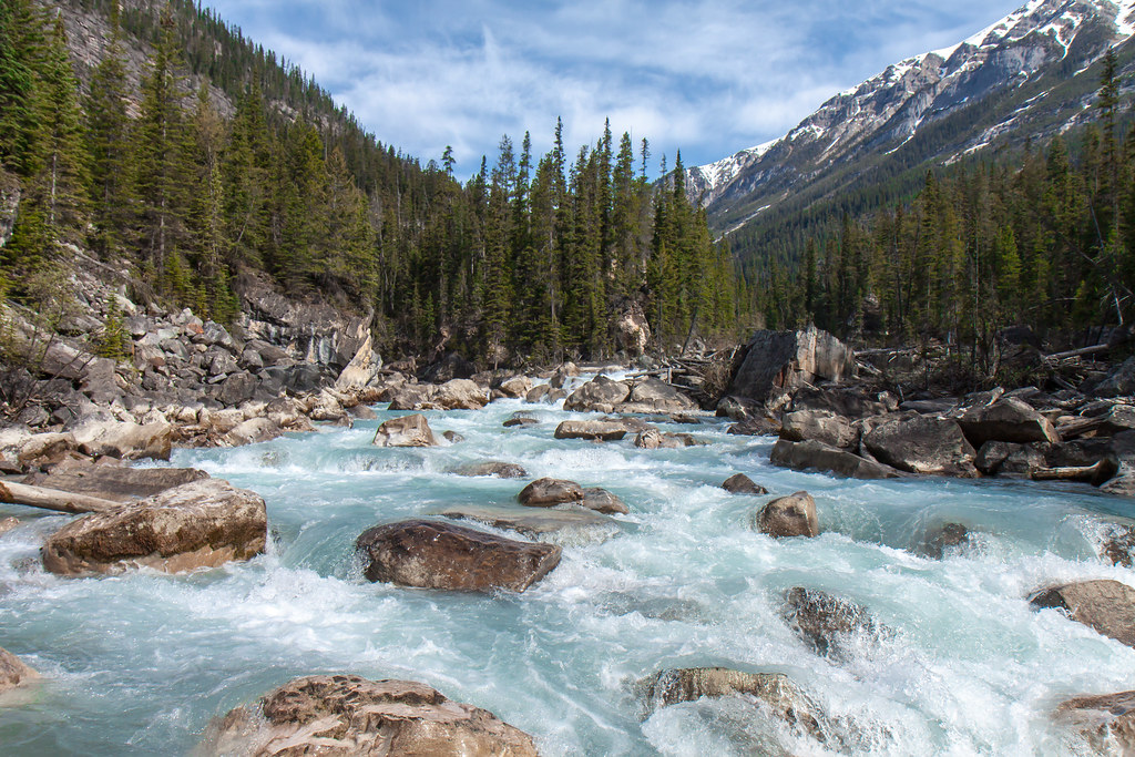 Yoho National Park, Yoho River