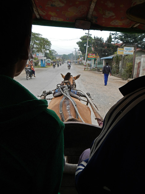 Getting to the starting point of our trek at Inle Lake via horse-drawn cart