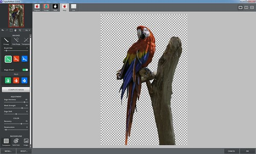 Screenshot of ReMask 5.0 with macaw selected