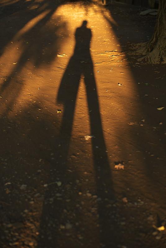 東京路地裏散歩 西日暮里 2015年9月27日