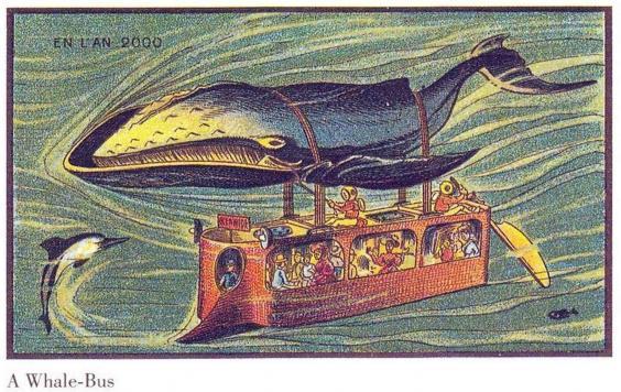 whale bus