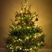 Christmas tree by dash.null