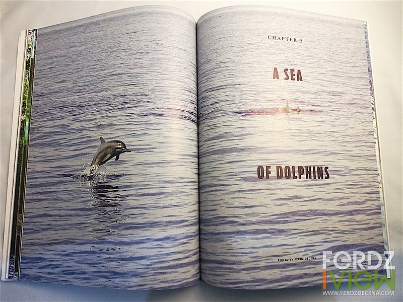 A Sea of Dolphins opening spread