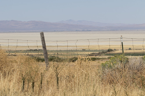 field fenced wirefence drylake honeylake us usa america lakebed southernend dry hot arid summer latesummer
