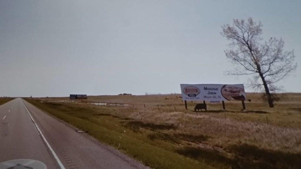 Pizza billboard, grazing cow, leaning tree. #ridingthroughwalls in #Saskatchewan #xcanadabikeride #googlestreetview