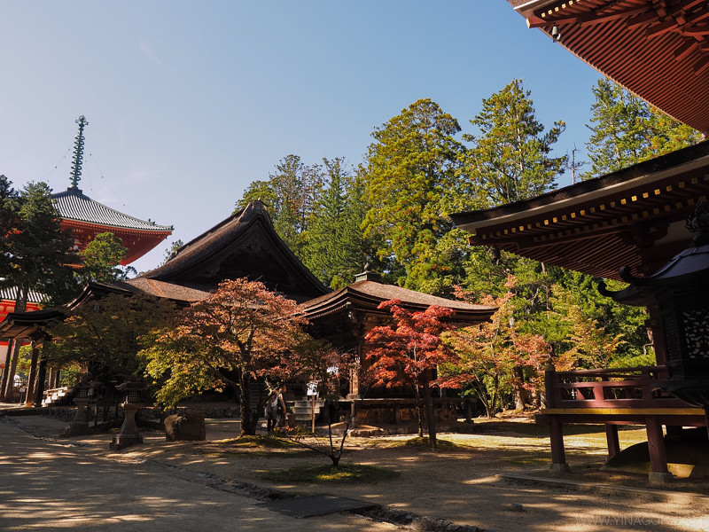 Koyasan October 2016