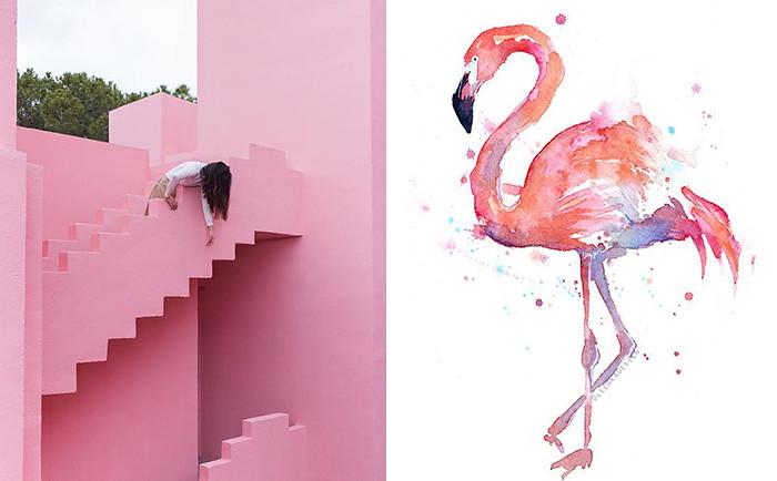 pinkfever 33