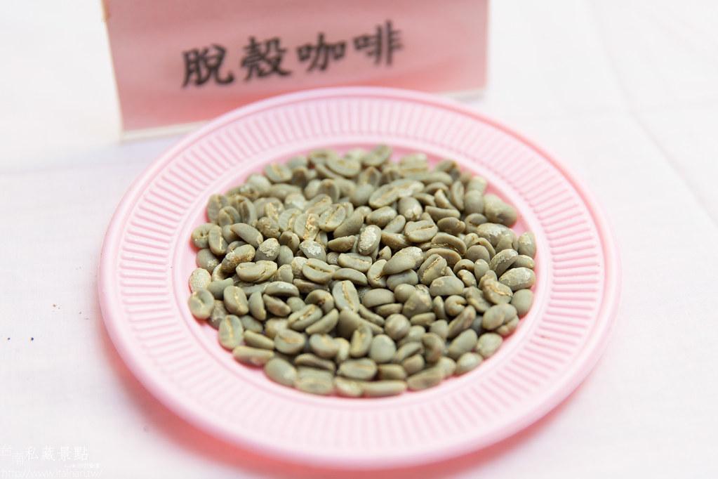 村長庭園咖啡 (9)