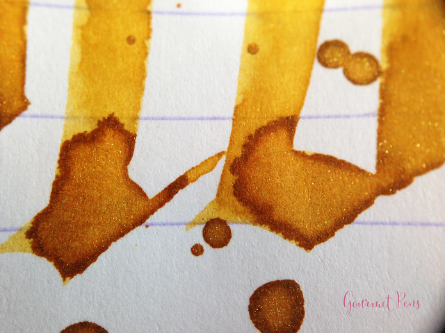 Ink Shot Review Diamine Golden Sands (8)