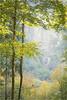 the season......autumn by Brigitte Lorenz