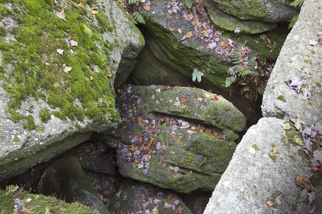 IMG_6865 Rock Jumble