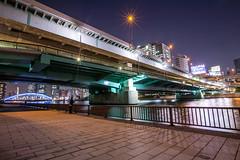 永代橋 手前は首都高速9号深川線