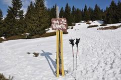Polemika: skialpinista jako živel?