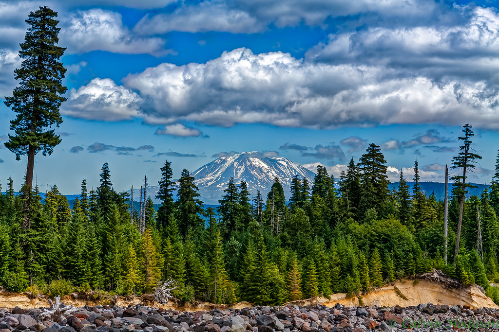 Mt. Adams from the point of view of Helens base