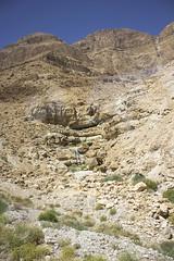 Dead Sea & Jordan Rift Valley 014