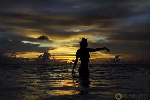 The Mermaid..