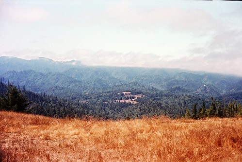 Kerrydale Ranch-5