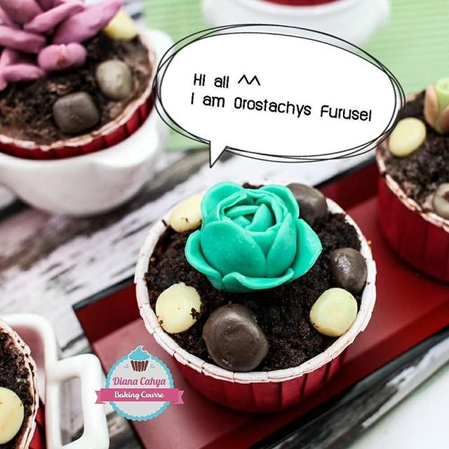 Hi all ^^ I am Orostachys Furusei  #Succulent #EcheveriaGoldenGlow #Cupcakes #Chocolate100% #NoFondant #Edible #DianaCahya #BakingTutorial #BakingClass #DianaCahyaBakingCourse #DeliciousChocolate #DeliciousChocoSucculentCupcake