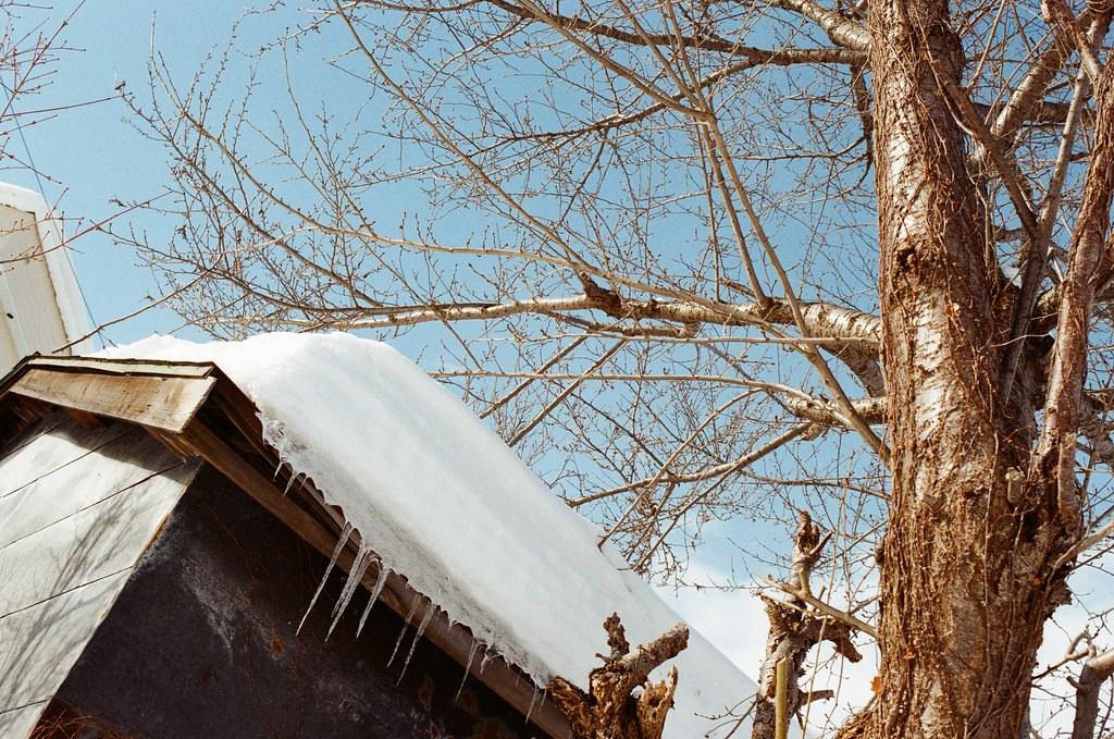 小樽 Otaru, Japan / Kodak ColorPlus / Nikon FM2 總是好奇屋頂積這麼多雪,屋頂會不會整個垮掉。  那怎樣除去屋頂的雪?屋頂有加熱桿?  好奇好奇?  Nikon FM2 Nikon AI AF Nikkor 35mm F/2D Kodak ColorPlus ISO200 8268-0038 2016/02/02 Photo by Toomore