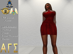 AGS INC. Womens Cocktail Dress with Appliers