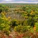 High Rollways Buckley, Michigan by Cyndie M