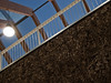 P6287620-c-web by Argolito